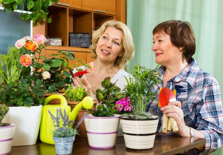 flowerpots: Two elderly women sitting near table with many flowerpots and gossiping Stock Photo