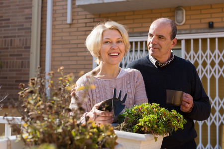 horticultural: Happy smiling mature woman with horticultural sundry and aged man drinking tea in patio. Focus on woman Stock Photo