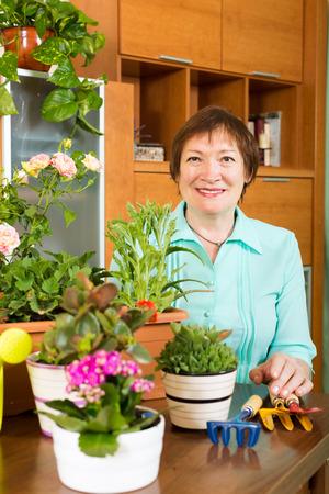 flowerpots: Happy mature gardener with flowerpots at home Stock Photo