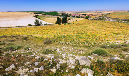 palencia province: Landscape with  fields in Europe at summer day.  Ampudia, province of Palencia,   Spain