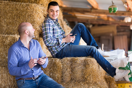 hayrick: Two farmers resting after work on a stack of straw and using their smartphones