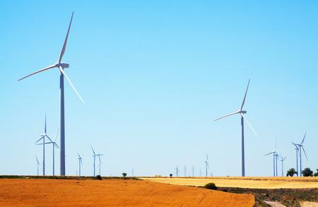 viento: Turbinas de viento en tierras de cultivo en Espa�a