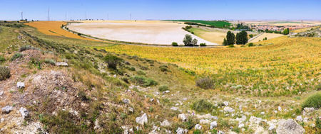 palencia province: Landscape with  fields in Europe at summer day.  Ampudia, province of Palencia, Castile and Leon, Spain