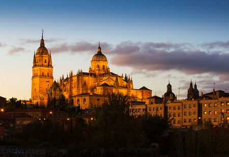 castile leon: Cathedral of Salamanca in dusk time. Castile and Leon, Spain