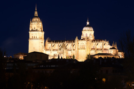 midnight: Cathedral of Salamanca in midnight time.   Spain