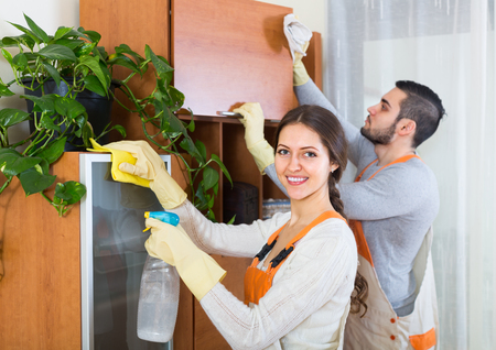 houseman: Professional clever cleaners cleaning in room