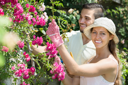 floriculturist: Happy family in flowers garden in gloves at holiday