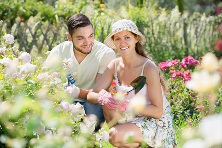floriculturist: Smiling married couple planting garden plants in summer resident