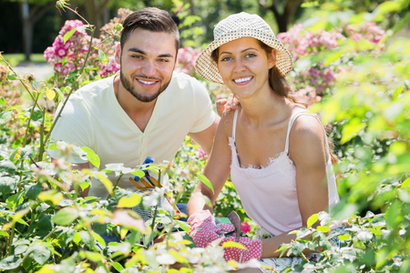 floriculturist: Happy family seedling garden flowers in gloves at summer holiday