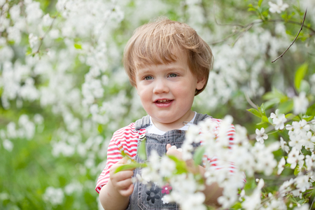 Toddler at blossoming garden in spring