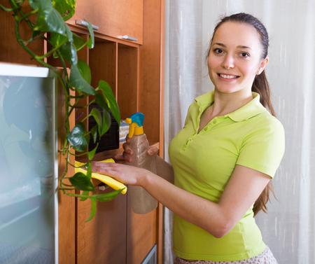 cleanser: Brunette girl cleaning furniture with cleanser and rag in living room Stock Photo