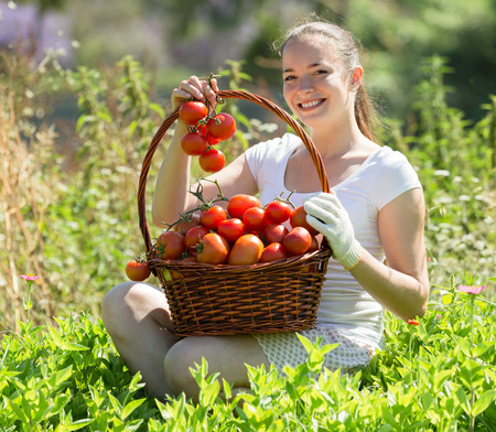 crop harvest: Cheerful young smiling woman with tomato harvest in garden