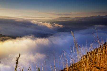 galicia: Misty summer morning.  Galicia, Spain Stock Photo