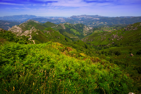 picos: General view of  mountains landscape in summer. Picos de Europa, Asturia, Spain