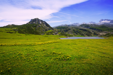 covadonga: mountains landscape with lake and pasture.  Lakes of Covadonga.  Asturias