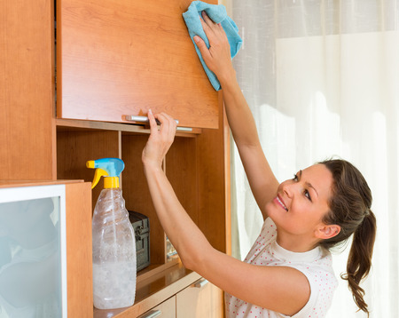 shred: Joyful smiling housewife cleaning cabinet with sprayer and shred Stock Photo