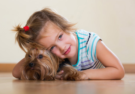 yorkie: Beauty female child embraces and playing with charming Yorkie at home