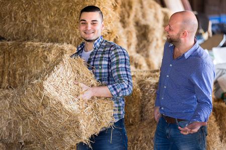 trabajando duro: Los agricultores que trabajan en un granero. Ellos están acumulando heno en siegue Foto de archivo