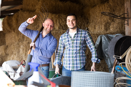 rancheros: Happy ranchers working in a shed full of farming tools and hay Foto de archivo