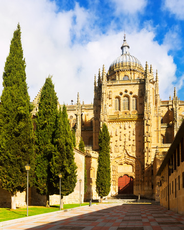castile: Gate of New Cathedral of Salamanca in sunny  day. Castile and Leon, Spain