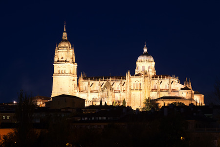 castile leon: View of  Cathedral of Salamanca in midnight time. Castile and Leon, Spain
