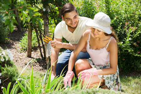 floriculturist: Young smiling family with gardening tool working in their garden