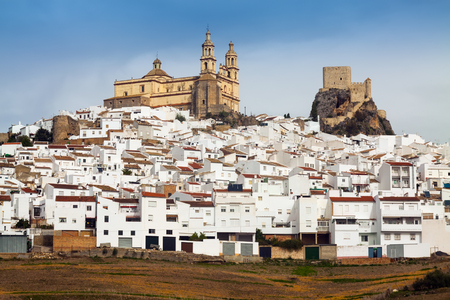cadiz: view of  andalusian town.  Olvera,   province of Cadiz,   Spain