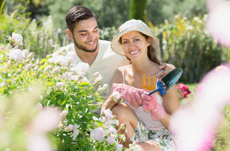 floriculturist: Young married couple planting garden plants in summer holiday
