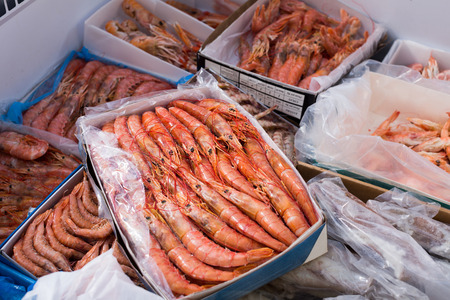 cooled: Assortment of cooled seefoods in show-case at fish market