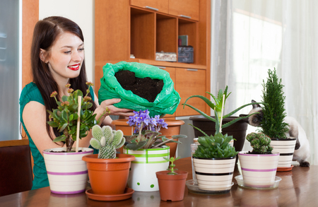 replant: Happy girl transplanting  plant in flowerpot at home Stock Photo