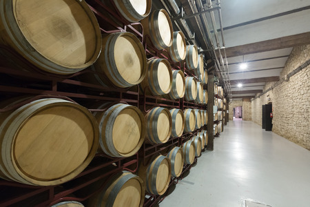 portugal agriculture: Many wooden barrels in contemporary winery Stock Photo