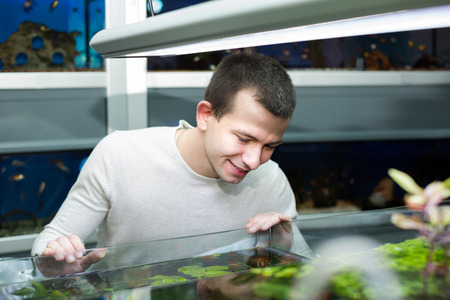aquarian fish: Portrait of young man watching tropical fish in petshop Stock Photo