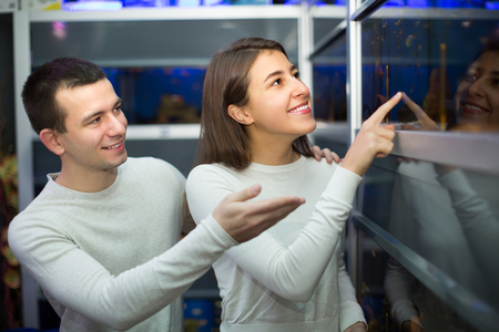 petshop: Cheerful smiling young couple watching tropical fish in aquarium at petshop . Focus on girl