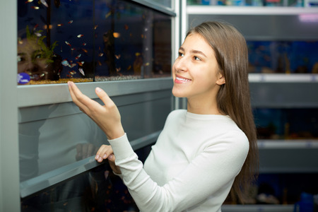 petshop: cheerful girl watching tropical fish in petshop Stock Photo