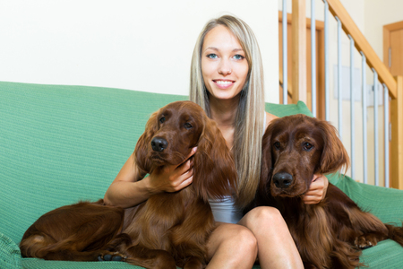 irish woman: Two red Irish setters next to a smiling woman on a sofa.Focus on dogs Stock Photo