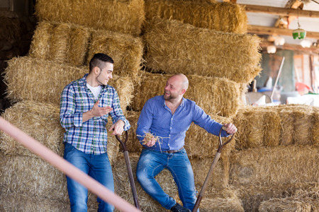 hayloft: Two adult farm workers tedding the hay at hayloft. Focus on the right man
