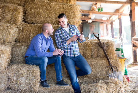 ranchers: Smiling ranchers resting on a stack of hay. One farmer shows another one something on his phone Stock Photo