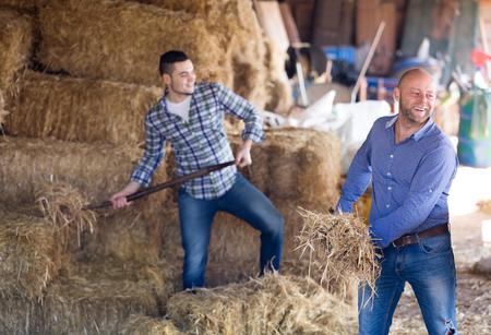 hayloft: Adult farm workers tedding the hay at hayloft