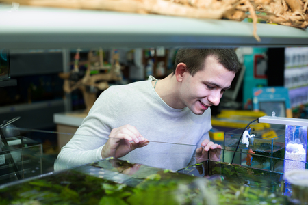 selecting: Portrait of young man selecting tropical fish in petshop aquarium