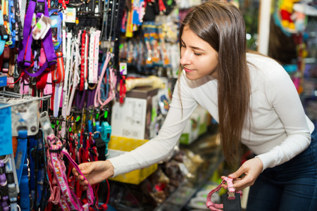 petshop: Portrait of happy girl selecting collars and leads in petshop