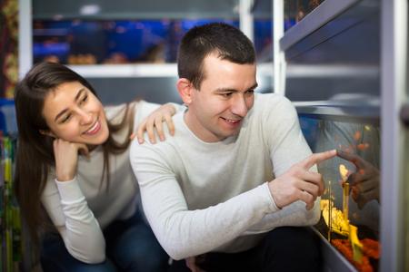 aquarian: Young couple choosing tropical fish for home aquarium at petshop. Focus on guy