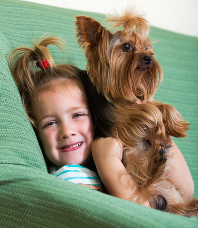Female child playing with charming Yorkie on sofa at home Banco de Imagens
