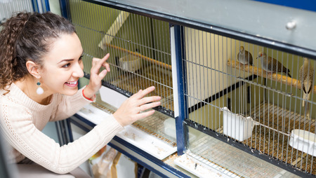 petshop: Portrait of joyful young brunette watching singing birds in petshop