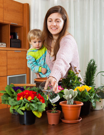 replant: Young smiling housewife with a toddler watering the flowering plants in the room
