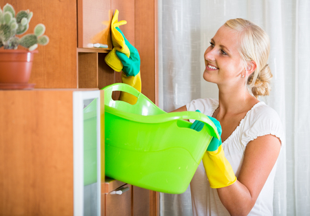 cleanup: smiling housewife doing regular clean-up at home