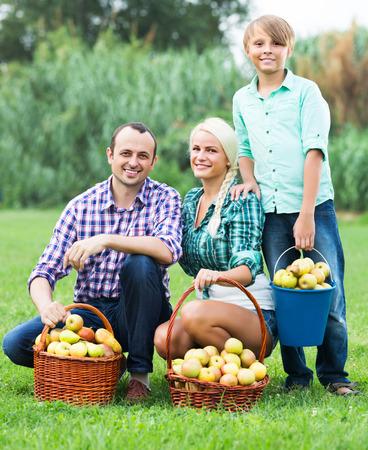 10 12: Smiling adult family harvesting apples in summer garden