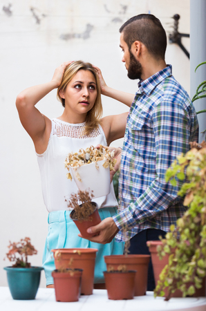 shrunken: Young spanish man making excuses for not watering girlfriends flowers Stock Photo