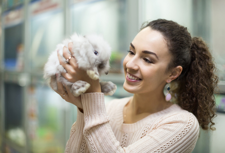 russian hamster: happy female customer watching fluffy chinchilla in petshop