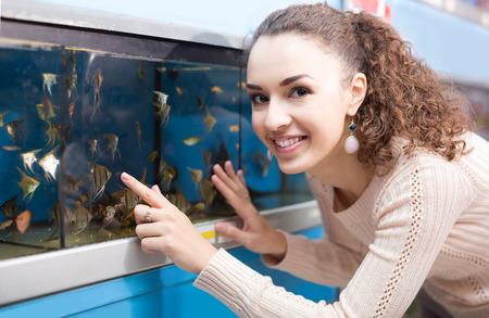 fish tank: female customer watching tropical fish in aquarium tank