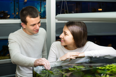 petshop: Smiling young couple watching tropical fish in aquarium at petshop . Focus on girl